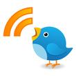 Karga Medya RSS sayfamıza abone olun